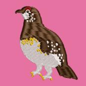 hajimechan