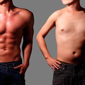 ダイエットアドバイザー;肉体改造X