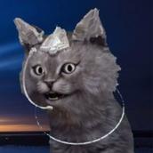 心理カウンセラー猫コグニン
