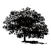 wood_design