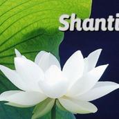 Shanti115
