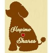 Hapimo Shares