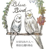 bluebird7222