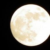 月乃玄太郎
