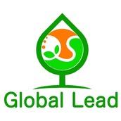 global lead