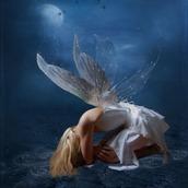 白魔術妖精の召喚士 真珠羅
